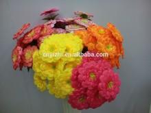 New varieties of ornamental flowers YZz136