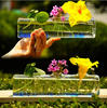 Rectangular clear large glass vase for sale for wholesale