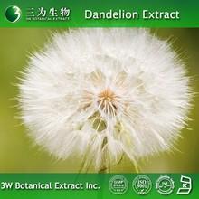 Useful Dandelion Herb Extract 20% Taraxasterols