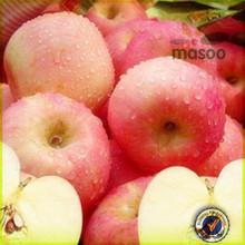 biggest exporter chinese fresh fruit red apple Fuji