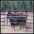 sheep/cattle/buffalo/bull/bovini/cow /corral panel/ paddock fence/farm gates