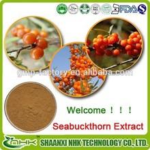 High quality seabuckthorn powder/ sea buckthorn fruit powder/ seabuckthorn extract