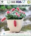 Biodégradables pots de semis de fibre de coco de transplantation libre. couleur terreuse