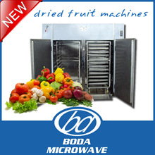 new arrival batch type dried fruit machines