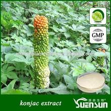 GMP factory supply organic konjac powder