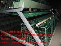 layer PVC coating bird cage
