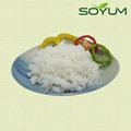 faible en glucides skinny vegan konjac riz instantané