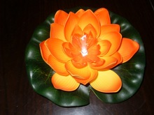Manufacturers supply plastic lotus lamp