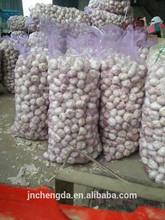 chinese fresh garlic price from Jinxiang