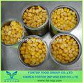 konserve dondurulmuş mısır salamura 340g