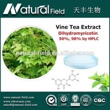 Full stocked 100% Pure Standardized top quality vine tea leaf p.e.