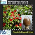 Natural puro 3% salidroside extracto de rhodiola rosea