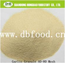 dried garlic G1