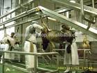 Halal Muslim sheep goat lamb slaughtering and processing line