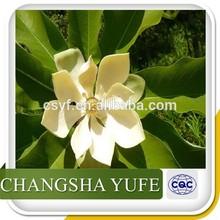 Organic Magnolia Bark Extract/Magnolia Cortex Extract/Cortex Magnoliae Extract