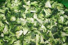 2014 Crop IQF Broccoli