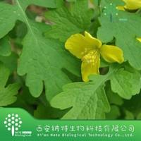 100% natural medicine,food grade Celandine Extract/ Chelidonine Powder/Greater Celandine Herb extract