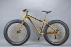 Luxurious 18K 26 inch fat bike giant propel