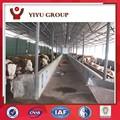 Acier de construction agricole/vache hangars/préfabriquées, vache logement