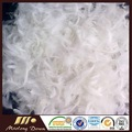 Washed Pure White Material de enchimento de almofadas de penas de pato para venda almofada do sofá