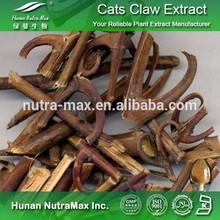 Radix Ranunculi Ternati Extract,Ranunculus Ternatus Extract,Catclaw Buttercup Root Extract