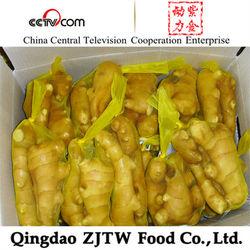 2014 new crop ginger buyer of ginger