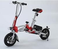 Two Wheels Balance Electric Bike 250w ROCO-Q1
