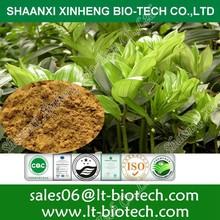 Polygonatum odoratum extract Fragrant Solomonseal Rhizome P.E Rhizoma Polygonati Odorati P.E Polyghace Seche powder