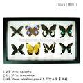 Fousen(055) naturaleza& arte natural la decoración del hogar artesanía proveedor que hace