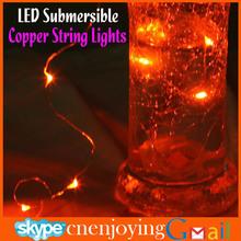 Holiday Lighting Decorative Indoor Micro Mini Craft Lights