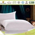 china fornecedor de branco para baixo almofadas
