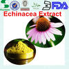 echinacea extract polyphenol 4% choric acid 1% for cold medicine material with high quality CAS: 70831-56-0