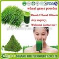 Usine de gmp 2015 100% fournir de haute qualité poudre de jus d'herbe de blé biologique