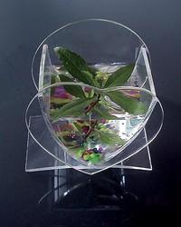 Small Acrylic Fish tank Small Pet cage