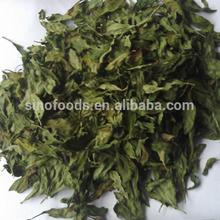 dry fruits best quality goji berry leaf