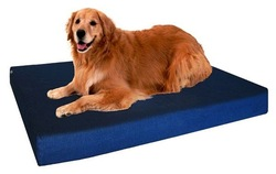 Extra Large Orthopedic Memory Foam Waterproof Pet Bed with Rewashable cover with zipper