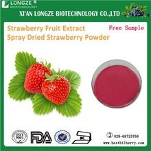 Strawberry Powder/Strawberry Flavour Powder/Strawberry Extract