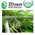 عشبة صينية التخسيس mucuna pruriens استخراج مستخلصات نباتية 100% l-- دوبا للتقليل الدهون