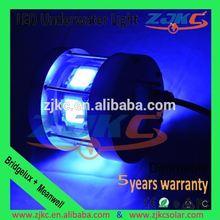 5 years warranty fishing light/ light stick fishing
