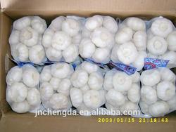 fresh garlic for sale in shandong china