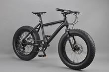 20 inch Fat bike time trial handlebars