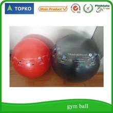 high grade eco-friend pvc gym/yoga/exercise ball with circle customize logos wholesale
