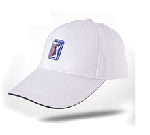 100% cotton 3D embroidery outdoor sport baseball golf hats and new 2015 caps/golf hat with ball market