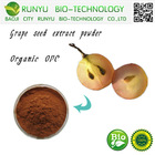Anti aging products grape seed extract powder OPC 95~98%