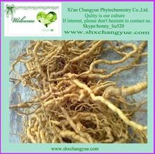 Natural Herbal Medicinal radix morinda officinalis extract