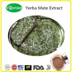 Wholesale Yerba Mate Powder, Yerba Mate Extract Powder, Yerba Mate Tea Extract