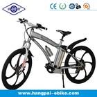 China electric mountain motorbike (HP-E004plus)