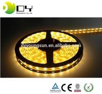 2015 new distributors wanted 5050 12v led lights