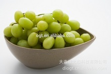 Mail order home new product salad bowl