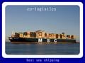 Barato y rápido mar / océano de la carga libre de CHINA de GUANGZHOU de extremo a extremo SANTO domingo, República dominicana ------ moda neoyorquina delgado